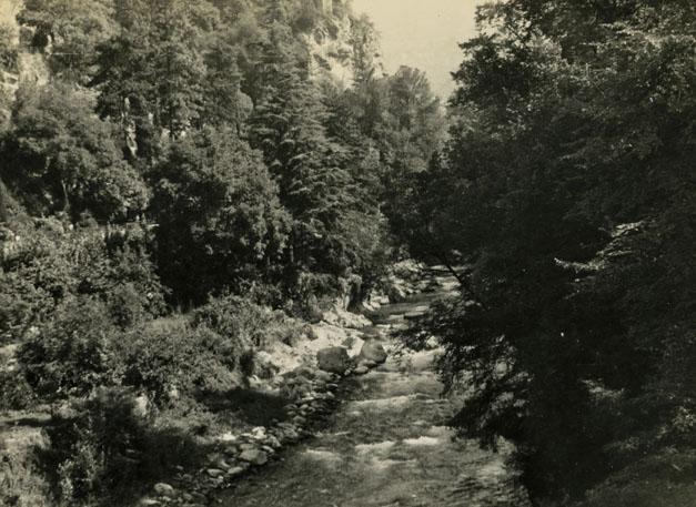 316 Passerfloden fra broen-627